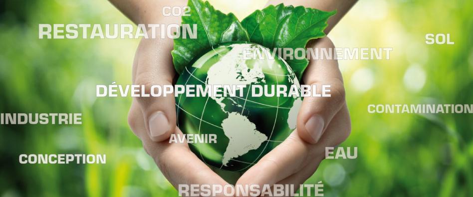Programme : Environnement et développement durable