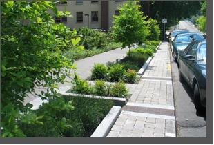 FOR158 Rues et stationnements verts pour une gestion durable des eaux pluviales