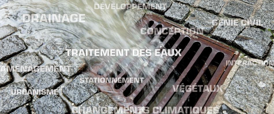 Programme : Gestion des eaux pluviales
